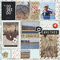 2015-04-11-Carlos-Avery-Cranes.jpg