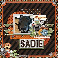 Sadie3WEB.jpg