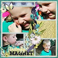 butterfly-magnet.jpg