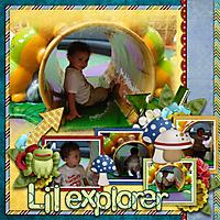 lilexplorer.jpg