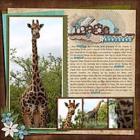 Giraffes_web.jpg