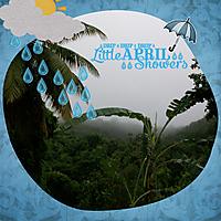 Raining-in-the-rainforest-4GSweb.jpg
