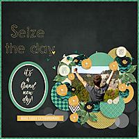 Seize_the_Day3.jpg