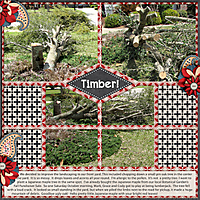 Timber_Nov_web.jpg
