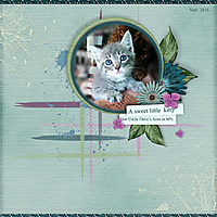 LittleKitty.jpg