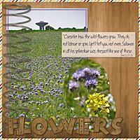 Spring_Flowers4.jpg