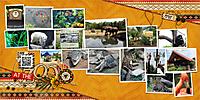 web_2015_August_14_Zoo_Yin_template-460.jpg
