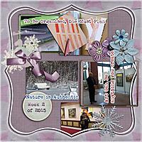 ac_project52_wk2_jan-15.jpg