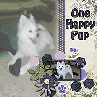 happypup_web.jpg