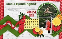 0716_Joan_s_hummingbird-4GSweb.jpg