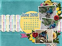 June-Desktop-GS.jpg