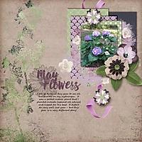 May_Flowers_600_x_600_.jpg