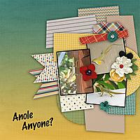 Anole-Anyone-4GSweb.jpg