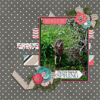 Spring1_web.jpg