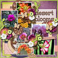 Tinci_DBD7_aimeeh_desert_rose_robin_web.jpg