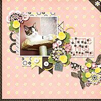 cat_tree_fb.jpg