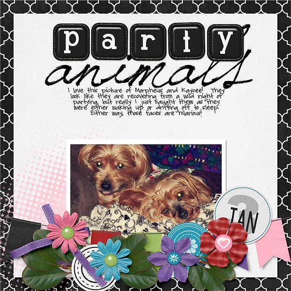 020-02-13-PartyAnimalsByCFALBRO