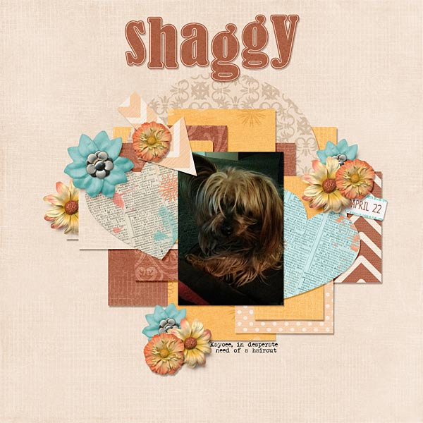 067-07-13-ShaggyByCFALBRO