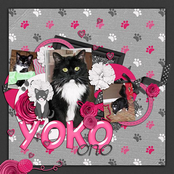 Yoko kitty