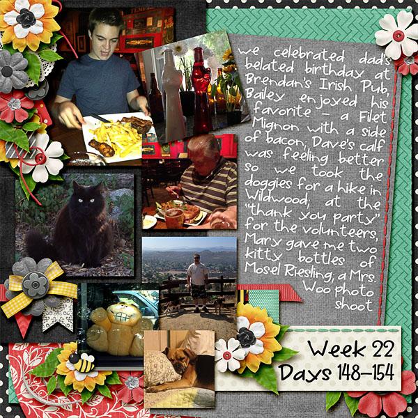 2013 - Week 22