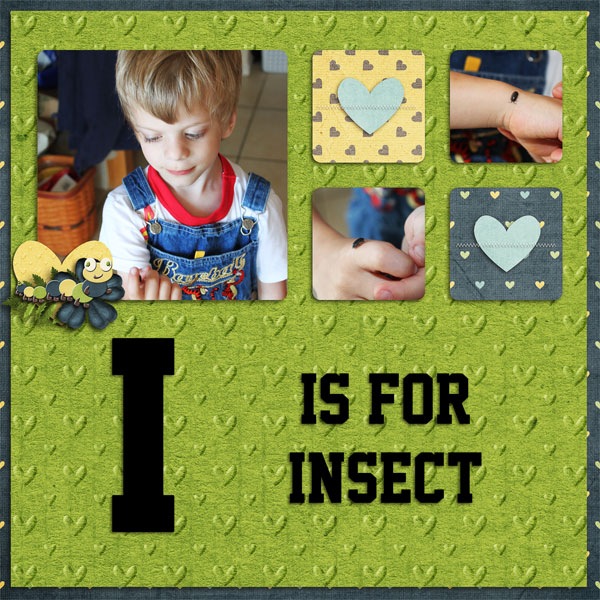 I is for Insect