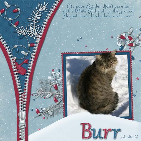 BurrKitty