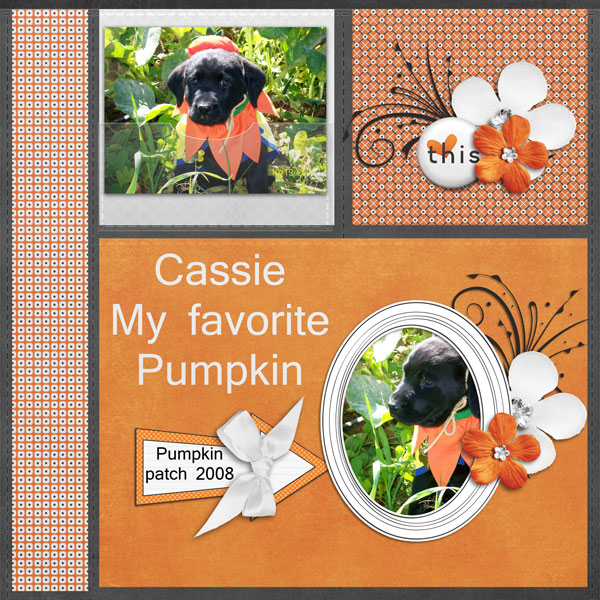 My favorite Pumpkin Cassie
