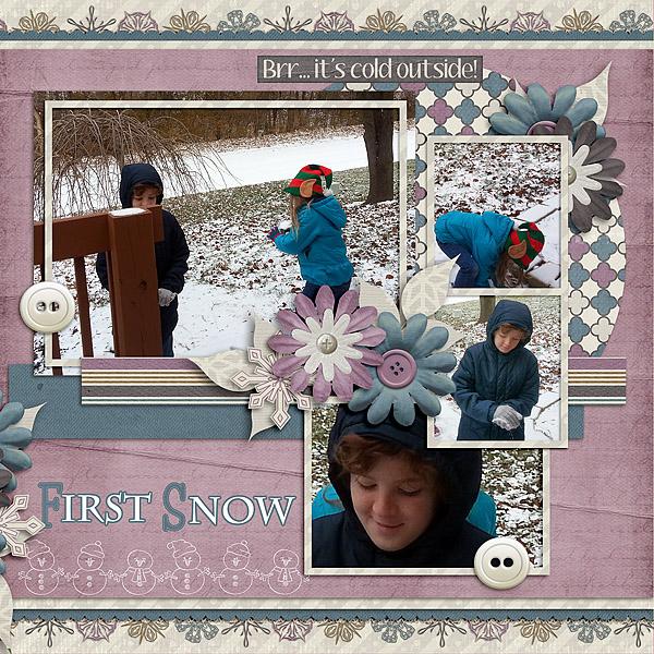 2013-12 brush First Snow 02