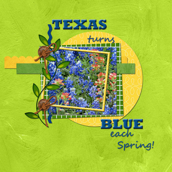Texas turns Blue each Spring!