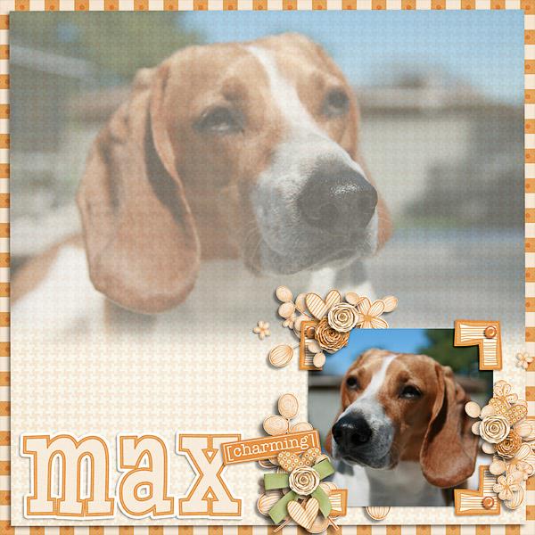 Max Charming