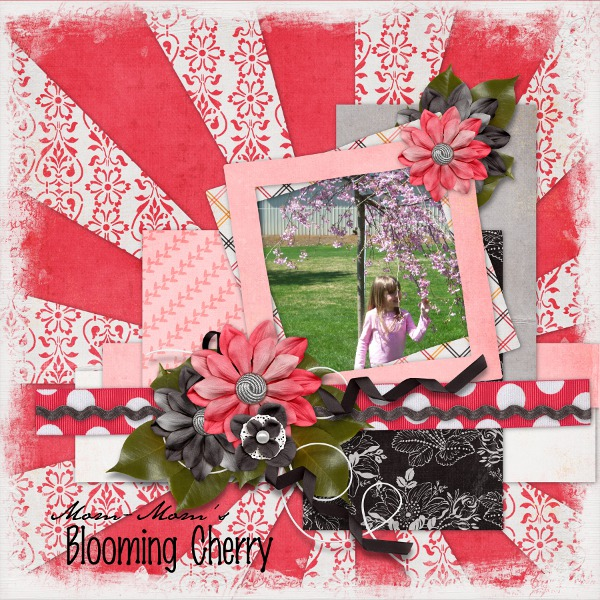 Mom-Mom's Blooming Cherry