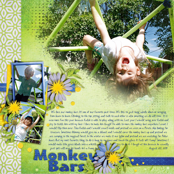 Monkey-Bars-20aug11