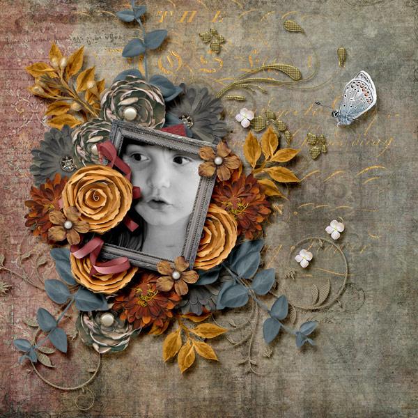 Our Autumn Rose