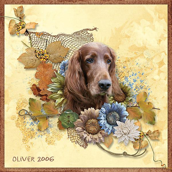 Oliver 2006