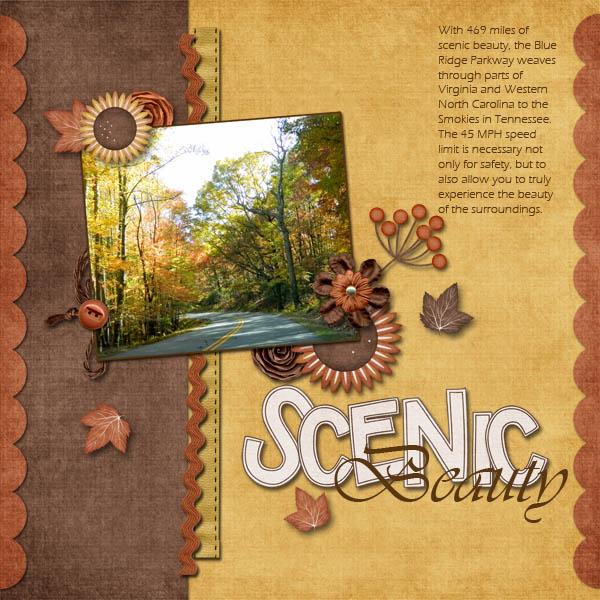 Scenic Beauty