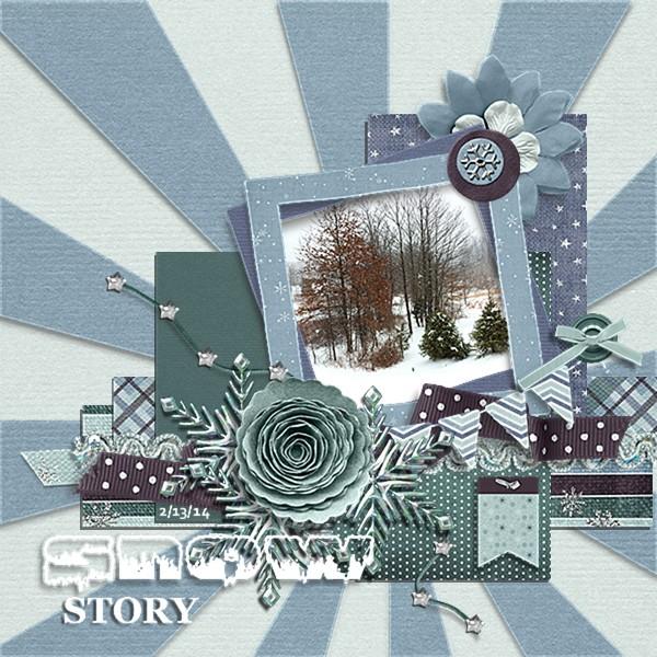 Snow Story Feb 13, 2014