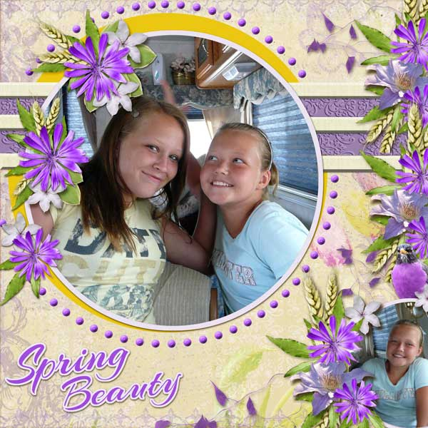 Spring-BeautyWEB