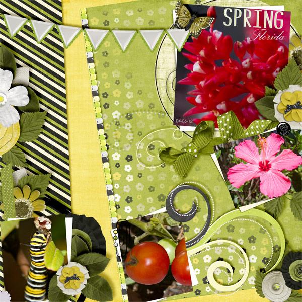 Springtime in Florida