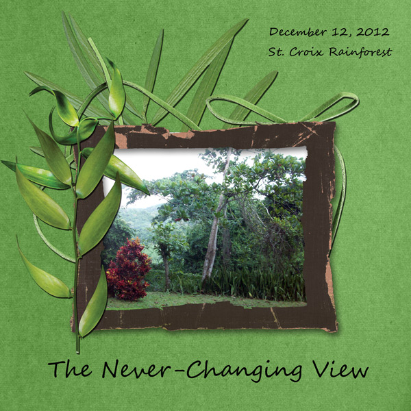 The Never-Changing View