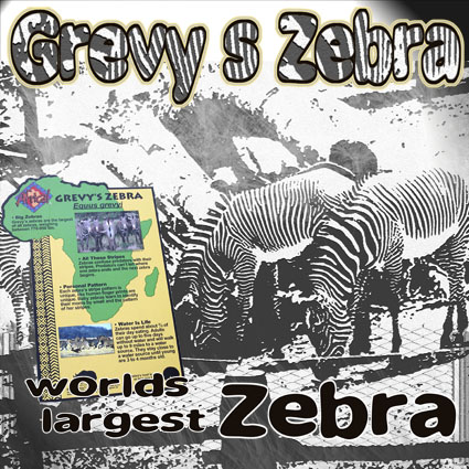 Peoria Zoo pages
