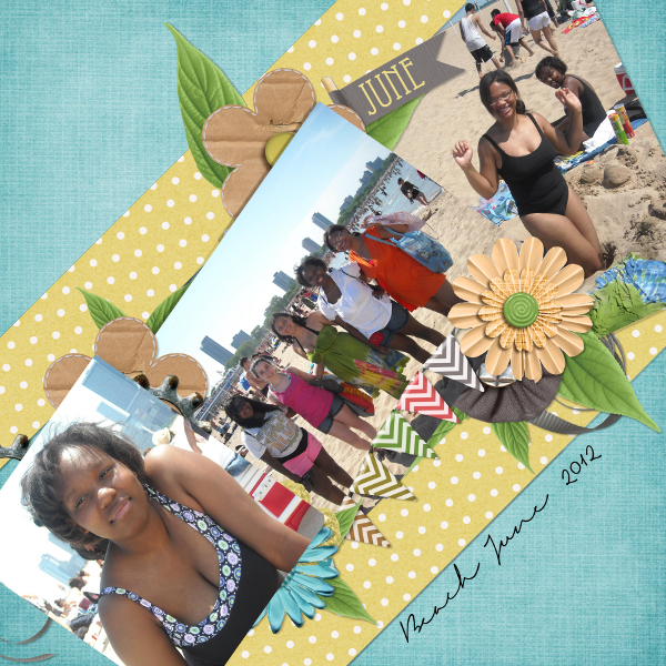 Beach June 2012