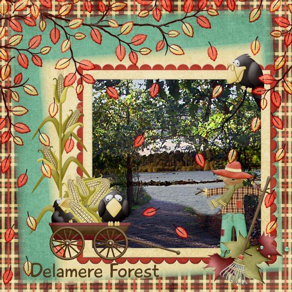 Delamere Forest, UK