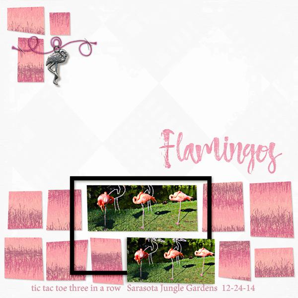 Flamingos in a row