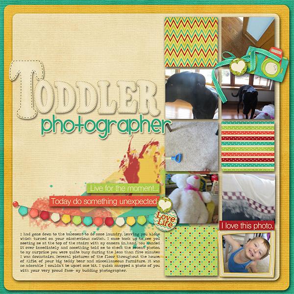 Toddler photog