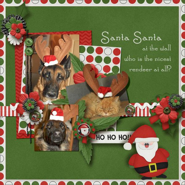 Nicest reindeer?!?