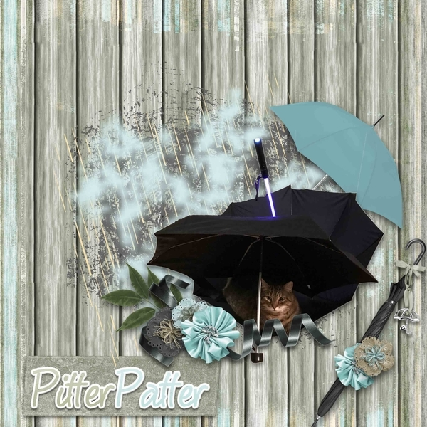 Rain Free Kitty