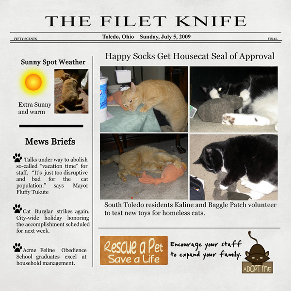 The Filet Knife