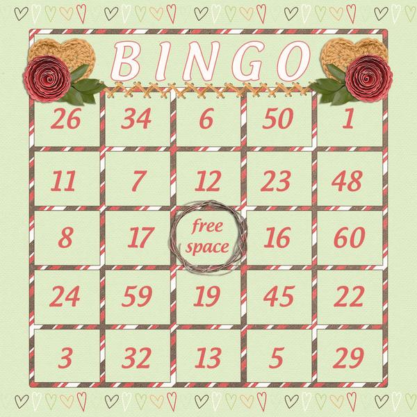 iNSD BINGO Card