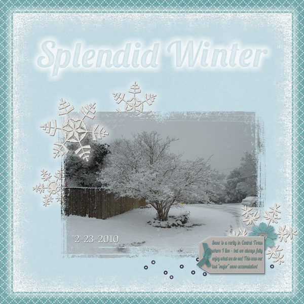 Splendid Winter
