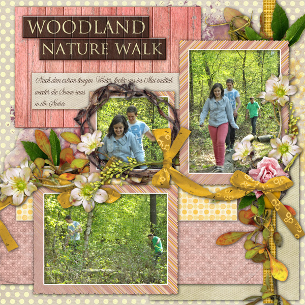 Woodland Nature Walk